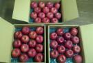 りんご3箱
