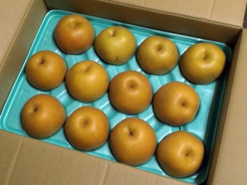Y・O様より梨1箱いただきました。
