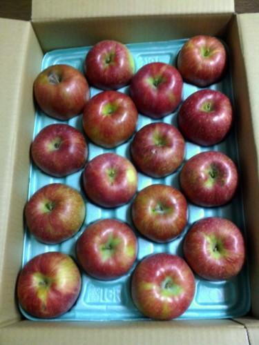 静岡県Y・O様よりいただいたりんご