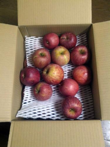 兵庫県E・F様よりリンゴをいただきました!