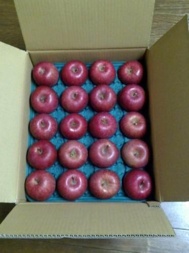 北海道北海道のK・W様よりリンゴをいただきました。