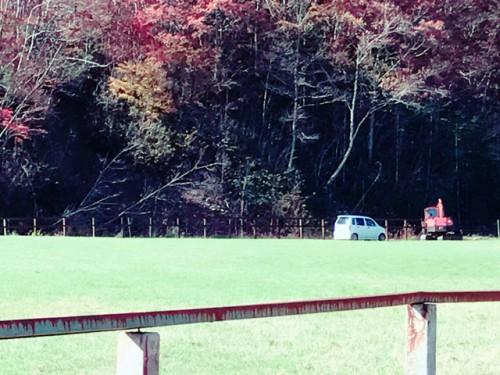 山側の牧柵打ち