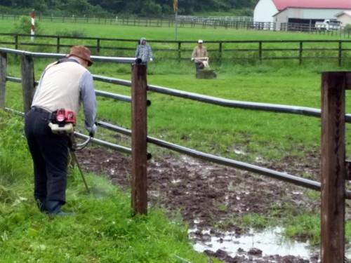 放牧地草刈