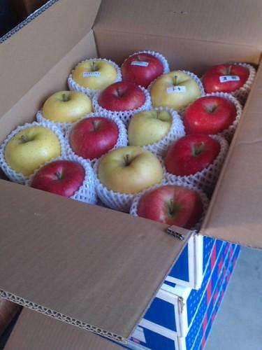 10/22H・S様よりりんごをいただきました!