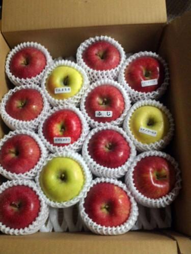 H・S様よりりんごをいただきました!
