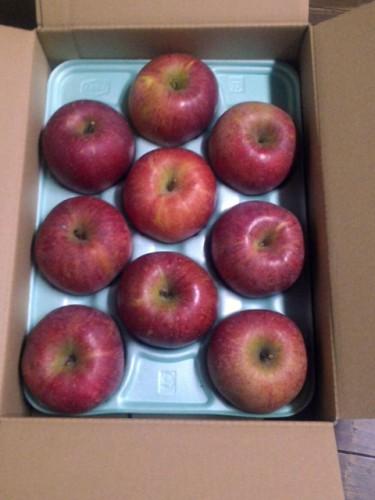 北海道のK・W様よりりんごをいただきました。