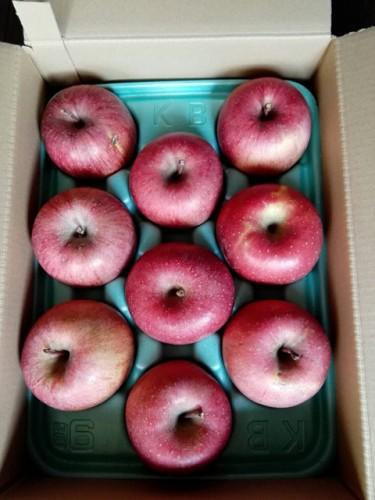 北海道のK・W様よりりんごをいただきました!