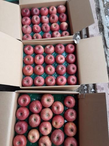 静岡県のY・O様よりりんごをいただきました!
