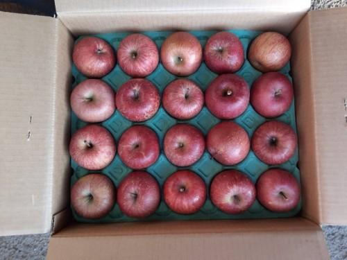 北海道のS・S様よりりんごをいただきました!