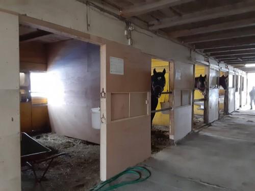 1馬房増築した厩舎