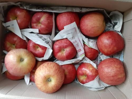 新潟県のK・I様よりりんごをいただきました!
